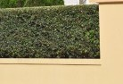 Ainslie NSW Decorative fencing 30